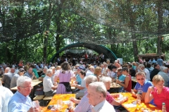Dorffest_2012 (2)