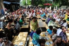 Dorffest_2012 (5)